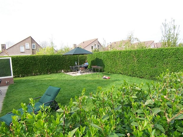 Tuin terras drainage - Tuin landscaping fotos ...